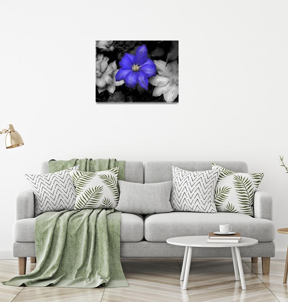 """blue flower""  (2011) by jasheimages"
