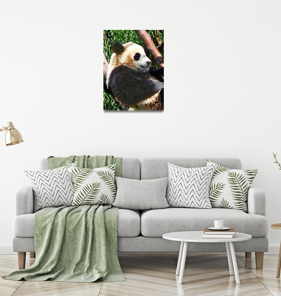 """Panda in Tree""  by susansartgallery"