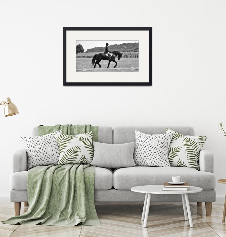 """""""© CBp Dressage Warmup on Friesian Horse""""  (2014) by creekbottomgifts"""