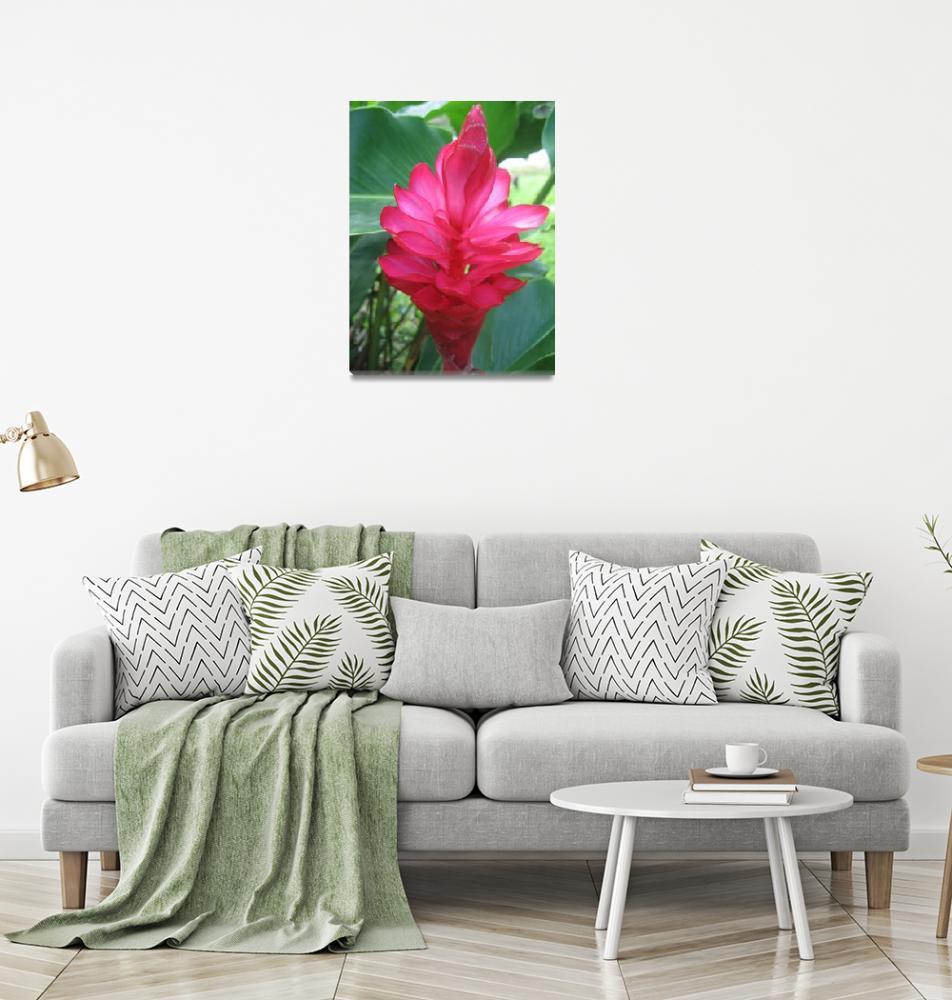 """Flower of Fiji""  (2007) by cbaldridge"