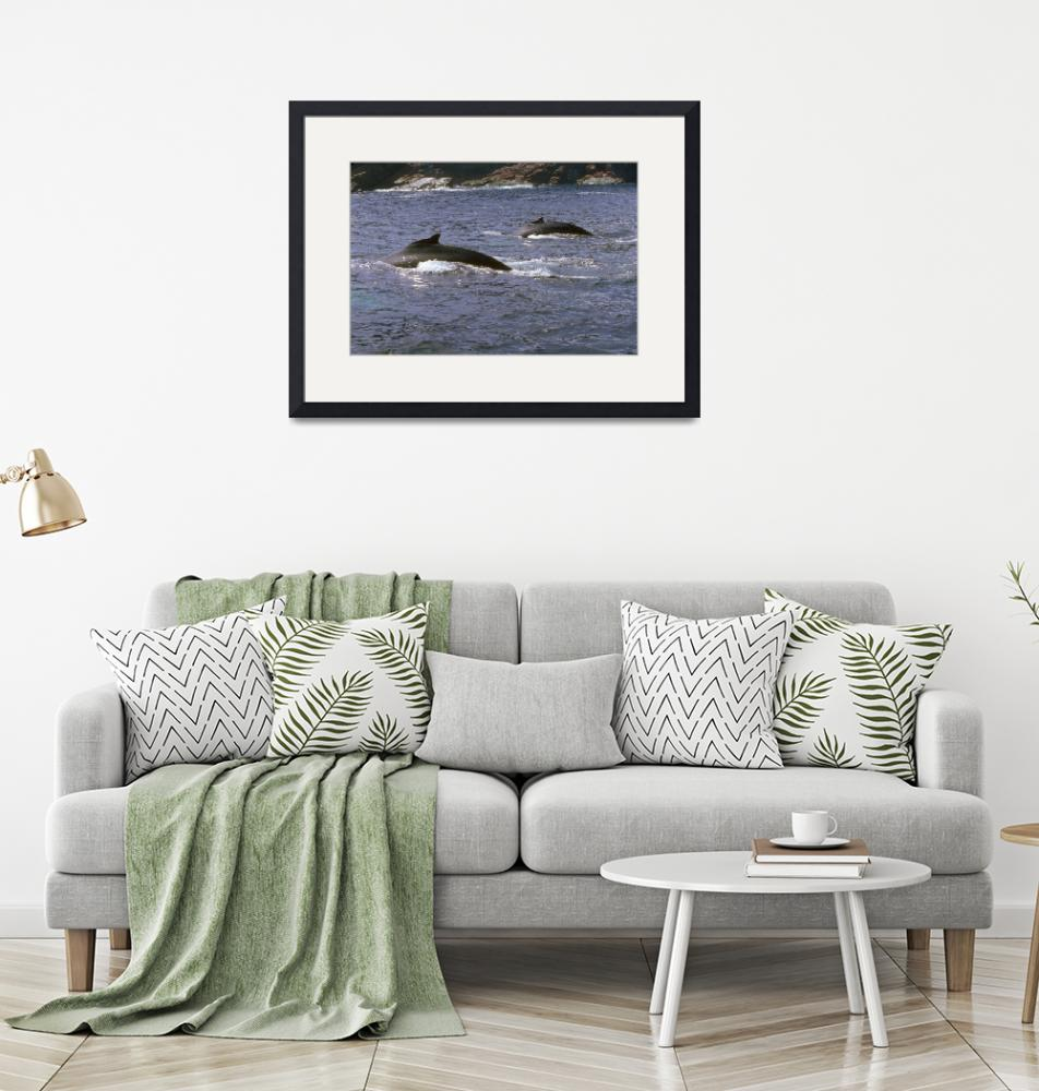 """""""Endangered Pair of Humpback Whales""""  by ArtLoversOnline"""