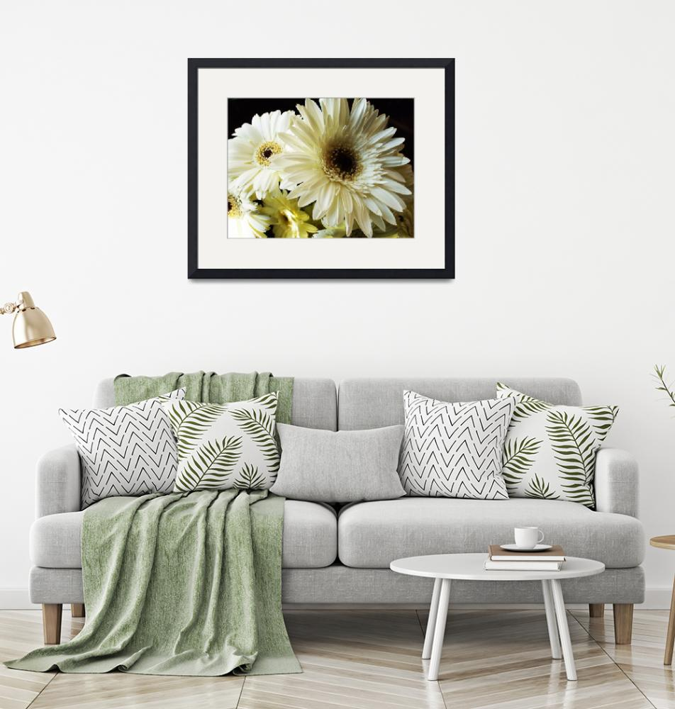 """""""White Gerber Daisy""""  (2009) by jupiterqueen"""