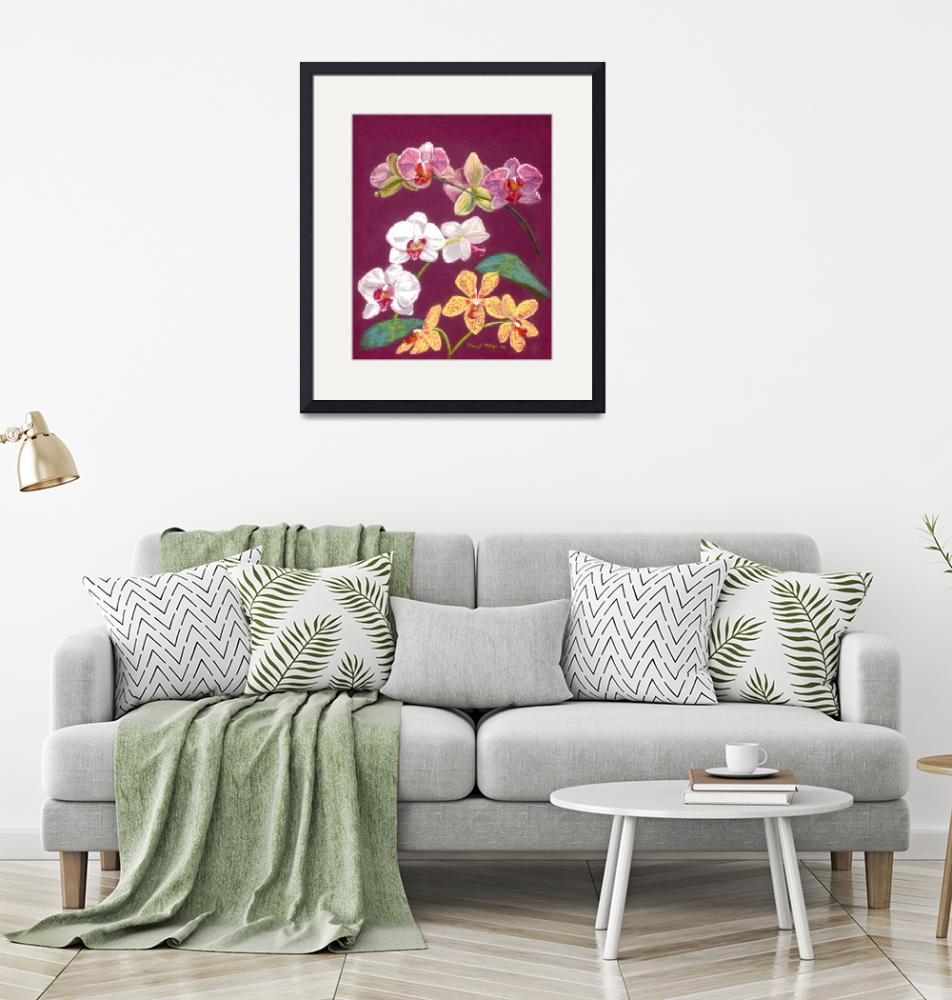 """""""Orchids_9Blossoms"""" by cherylmilne"""