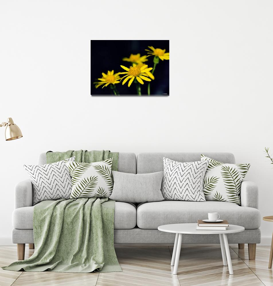 """""""Bright Yellow Flowers""""  (2011) by William63"""