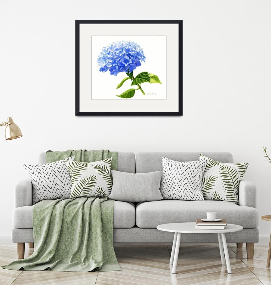 """""""Blue Hydrangea Blossom, white background""""  (2016) by Pacific-NW-Watercolors"""