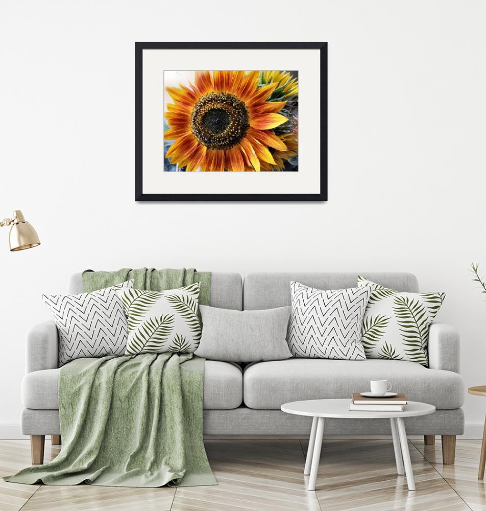 """Sunflower #1""  (2013) by cinsings"