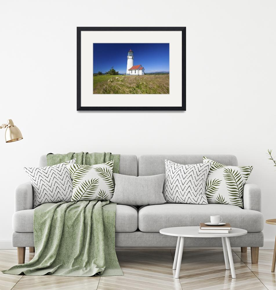 """Wildflowers And Cape Blanco Lighthouse Oregon, US""  by DesignPics"