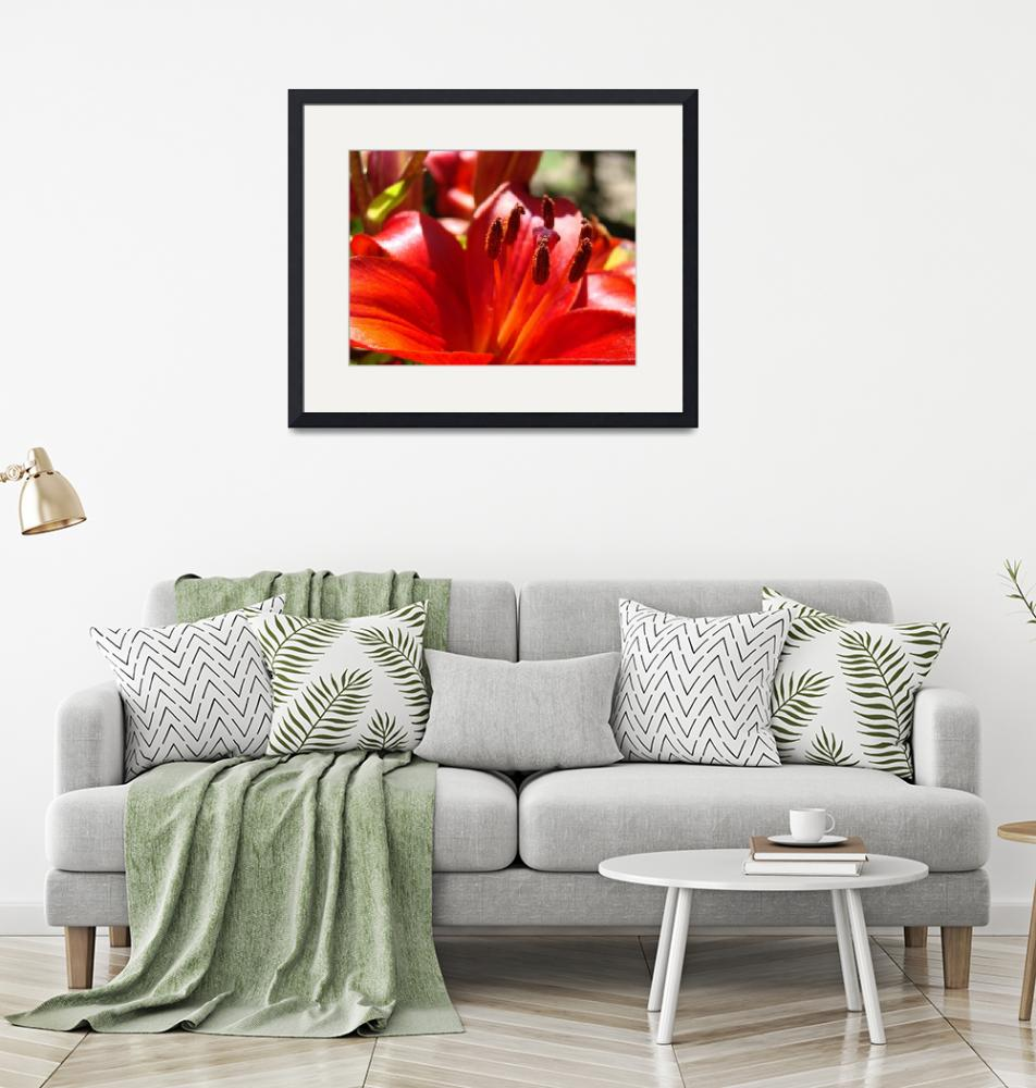 """""""Red Lily Flower art print Lilies Floral Baslee Tro""""  (2010) by BasleeTroutman"""