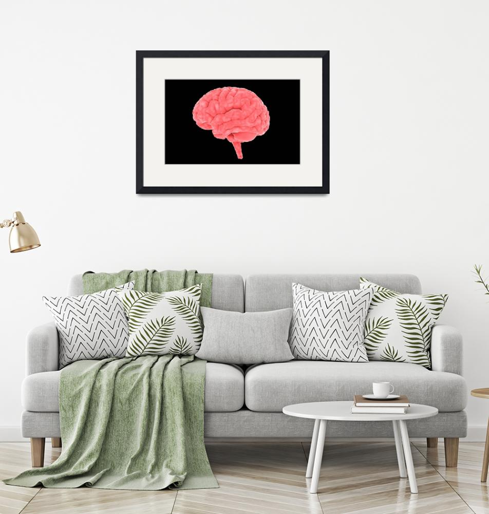 """Conceptual image of human brain""  by stocktrekimages"