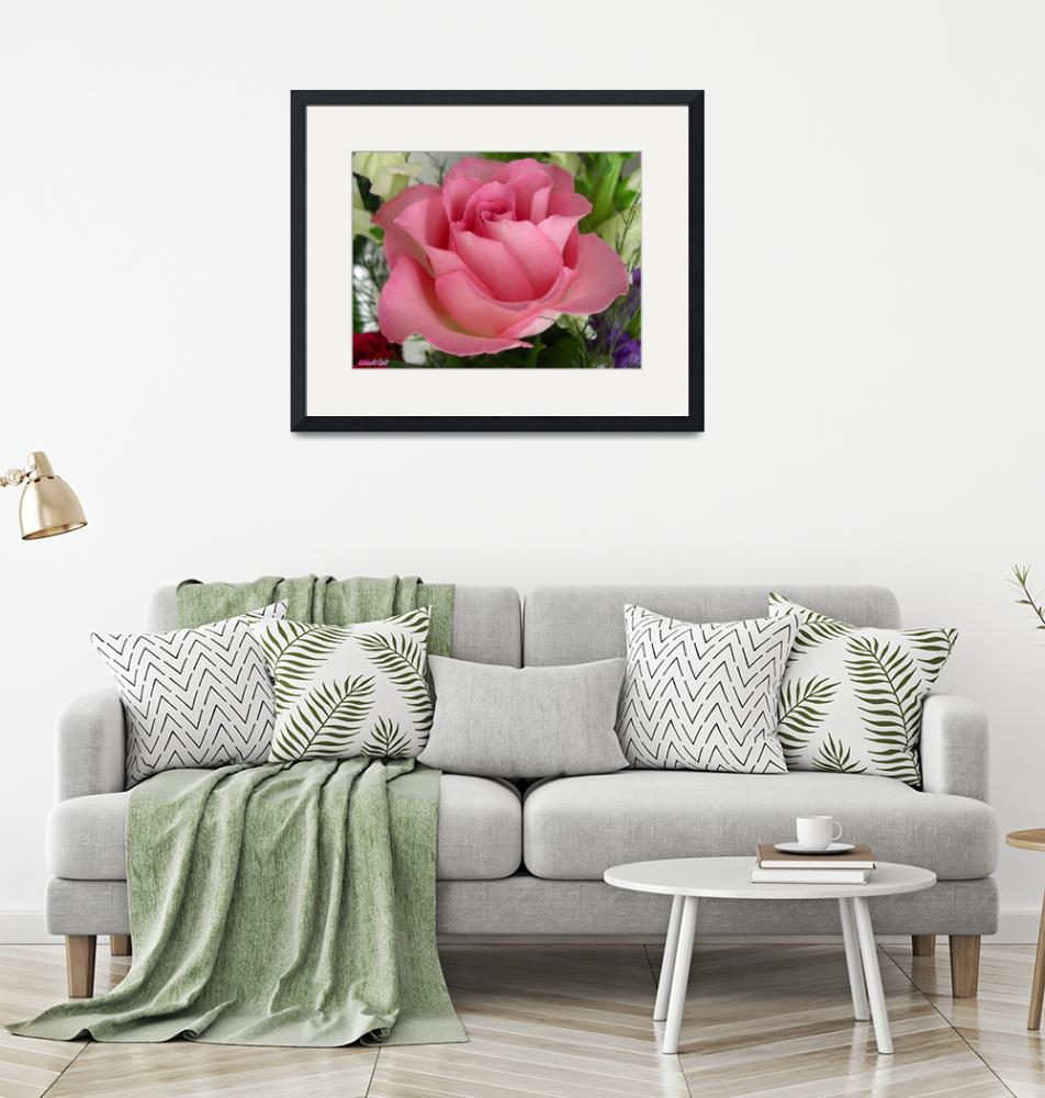 """""""Rose2""""  by ccmerino"""