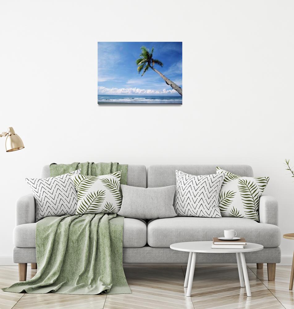 """Palm Tree On The Beach, Costa Rica""  by DesignPics"