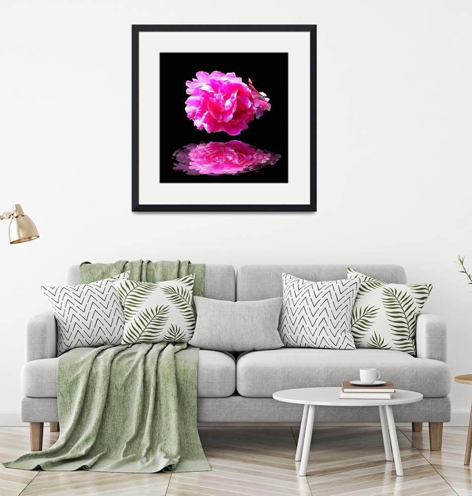 """""""Pink Peony Reflection""""  by deleas"""