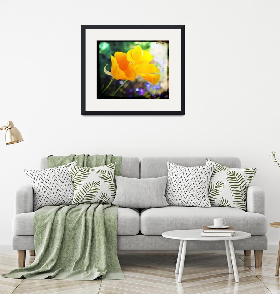 """""""Double the California Poppies""""  (2010) by TheHiddenStudio"""