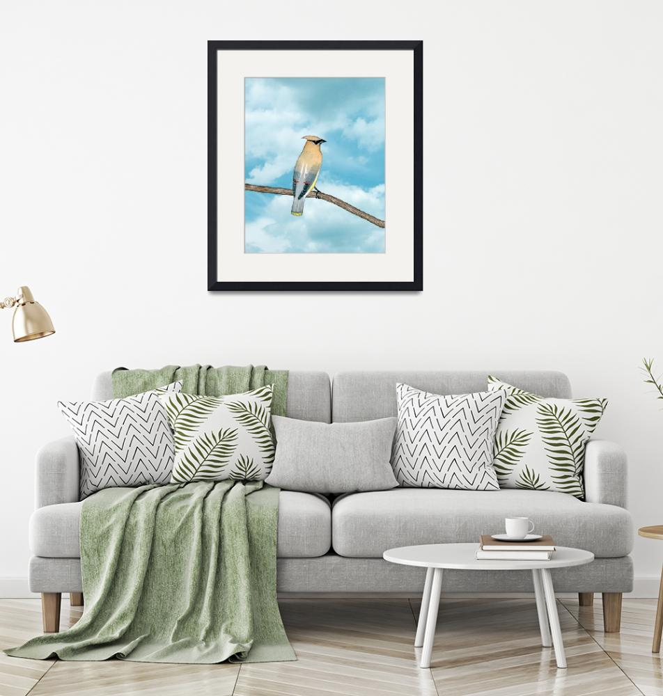 """""""cedar waxwing and blue sky"""" (2010) by sarahkdesigns"""
