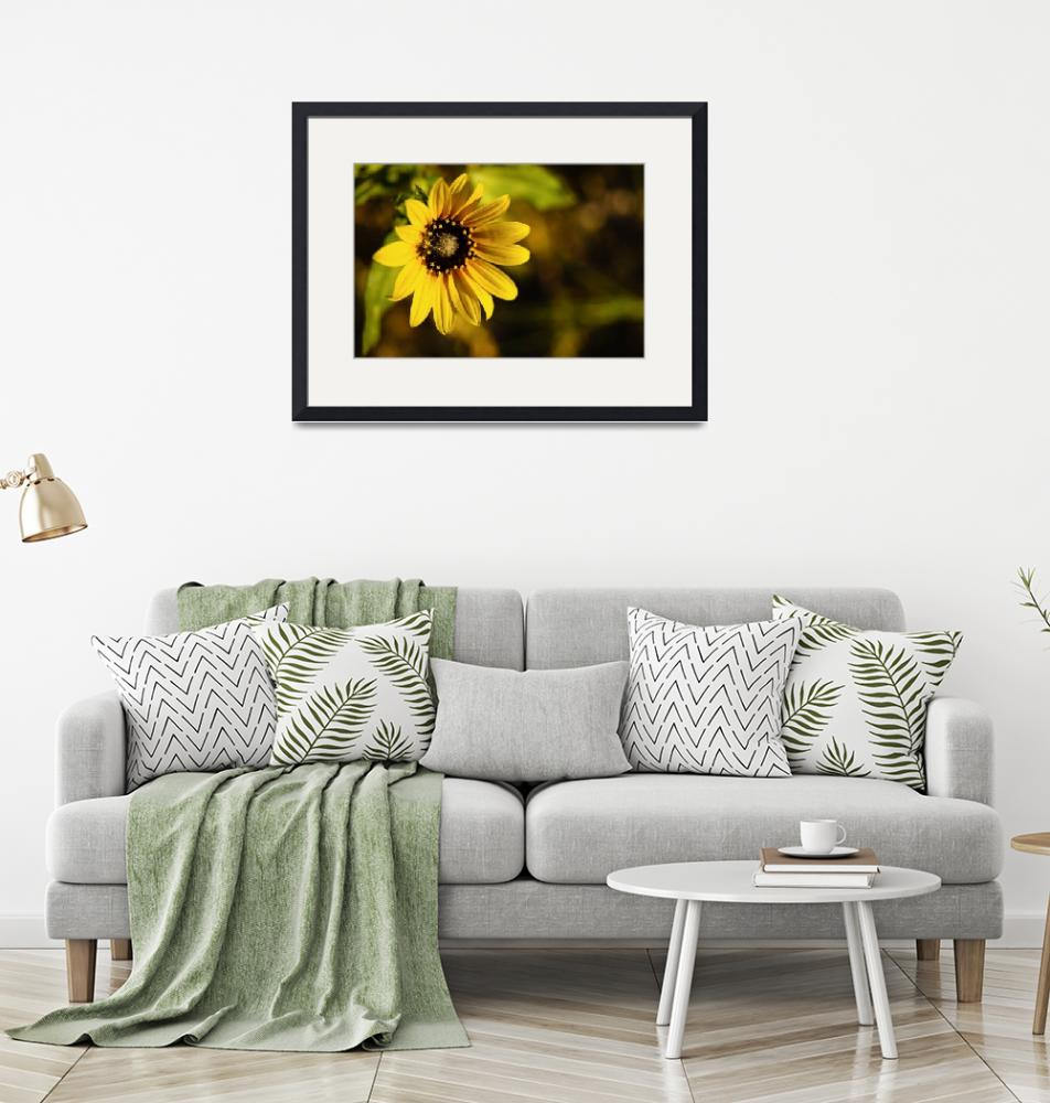 """""""Yellow Flower-1-4""""  by mmantra"""