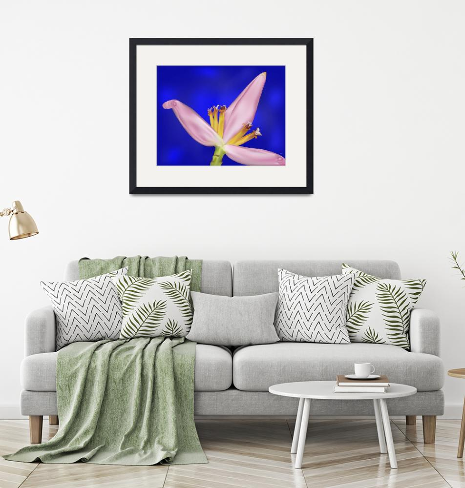 """""""Tropical Pink Banana Flower on Blue""""  (2012) by AnneSoule"""