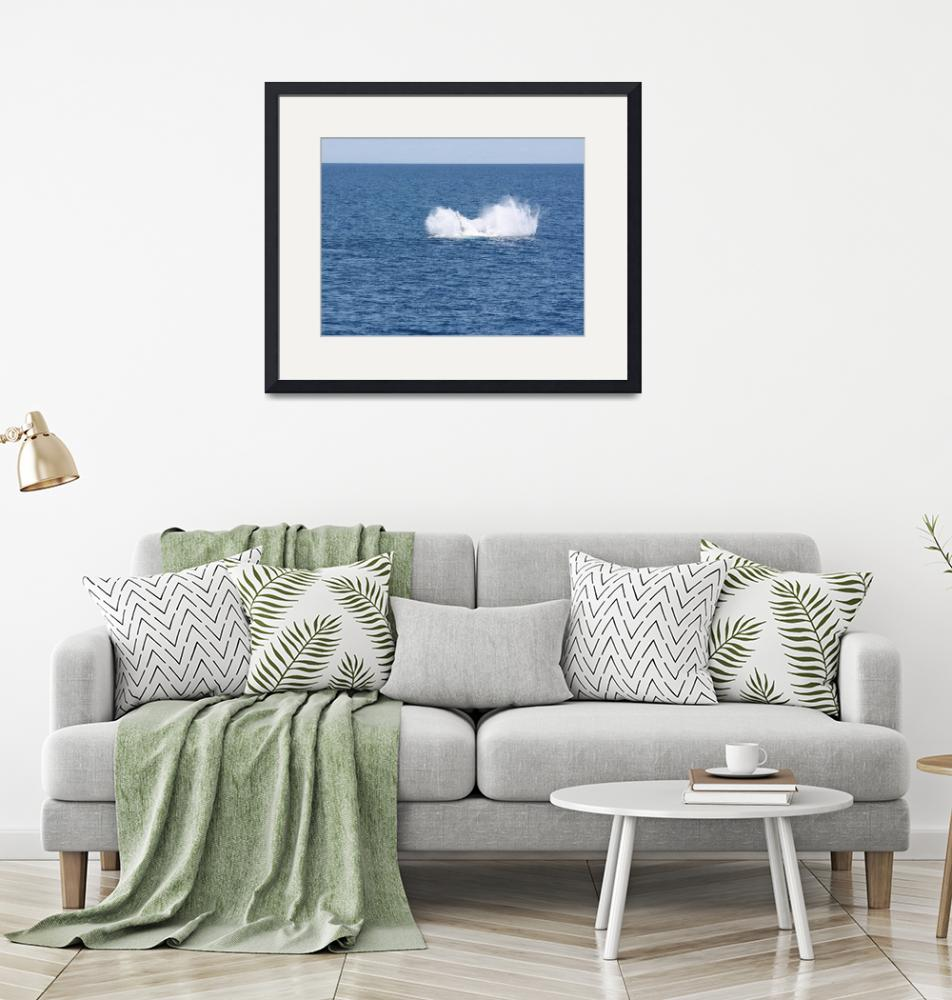 """""""NaP_ Whale Watching188a""""  by nevilleprosser"""
