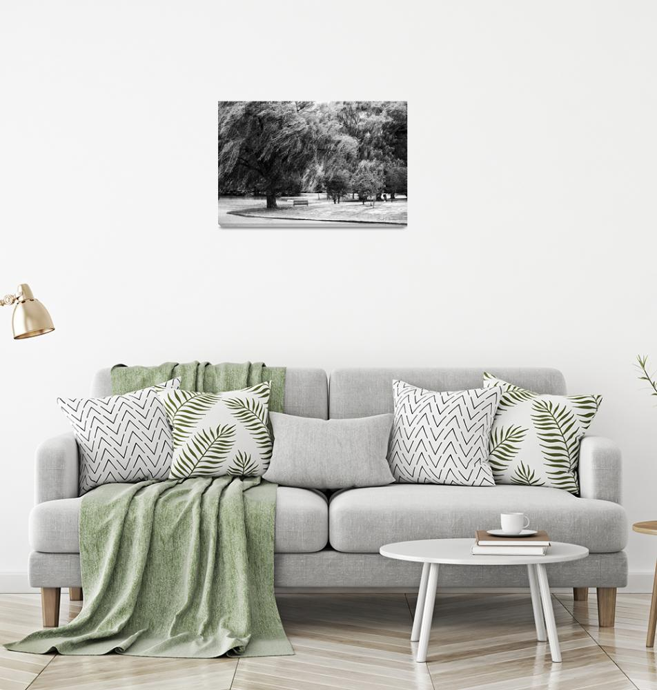 """""""Weeping Willow Tree Landscape Meditation Wall Art""""  (2010) by PhotographsByCarolFAustin"""