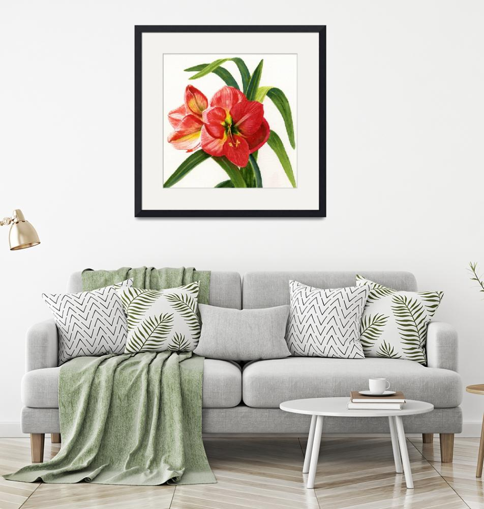 """Red Orange Amaryllis Square Design""  (2012) by Pacific-NW-Watercolors"