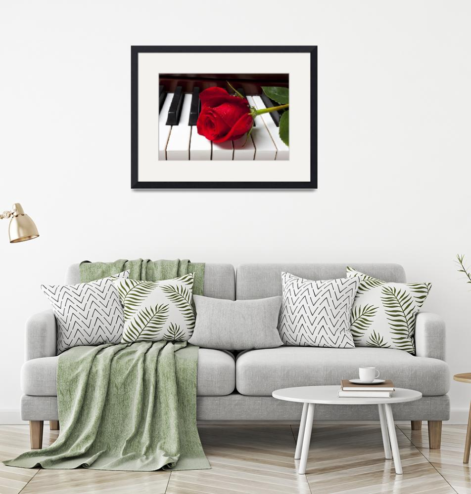 """Red rose on piano keys""  (2012) by photogarry"