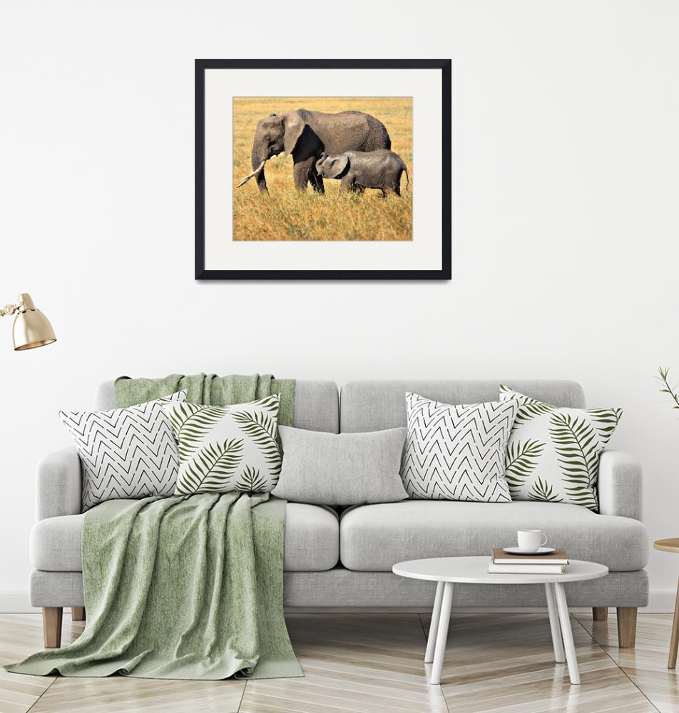 """Mother and Child- African Elephants""  (2013) by mjphoto-graphics"