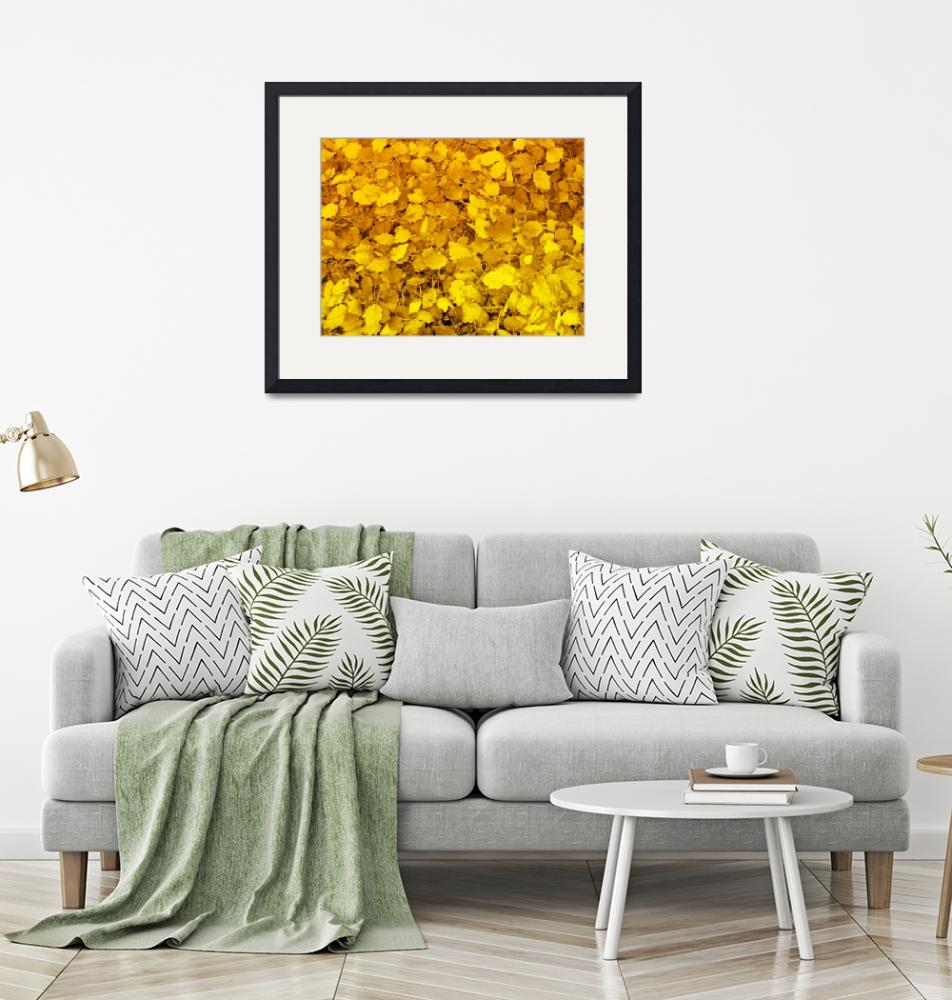 """""""Golden leaves""""  (2008) by Michele1x2"""