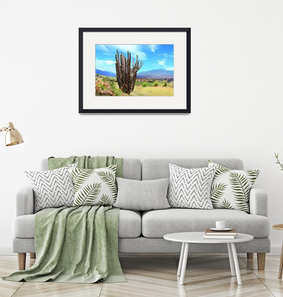 """""""organ pipe cactus in Tlalixtac with Tlacolula Vall""""  (2012) by charker"""