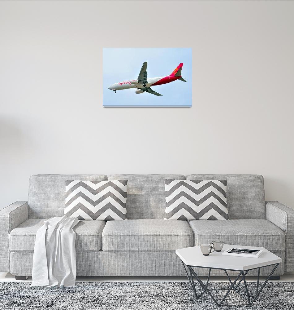 """Spicejet B-738, VT-SPE: Bird O fMany Owners""  (2011) by JoaoPonces"