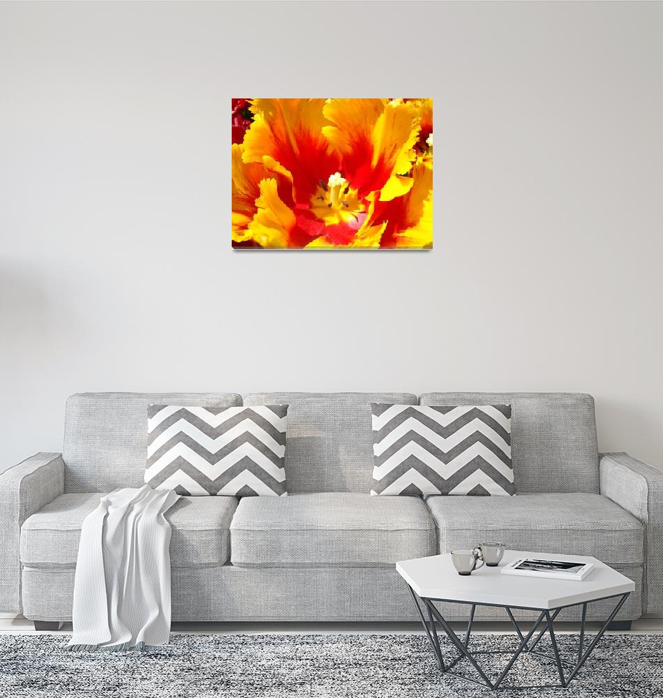 """""""Yellow Red Tulip Flower Floral art prints""""  (2011) by BasleeTroutman"""