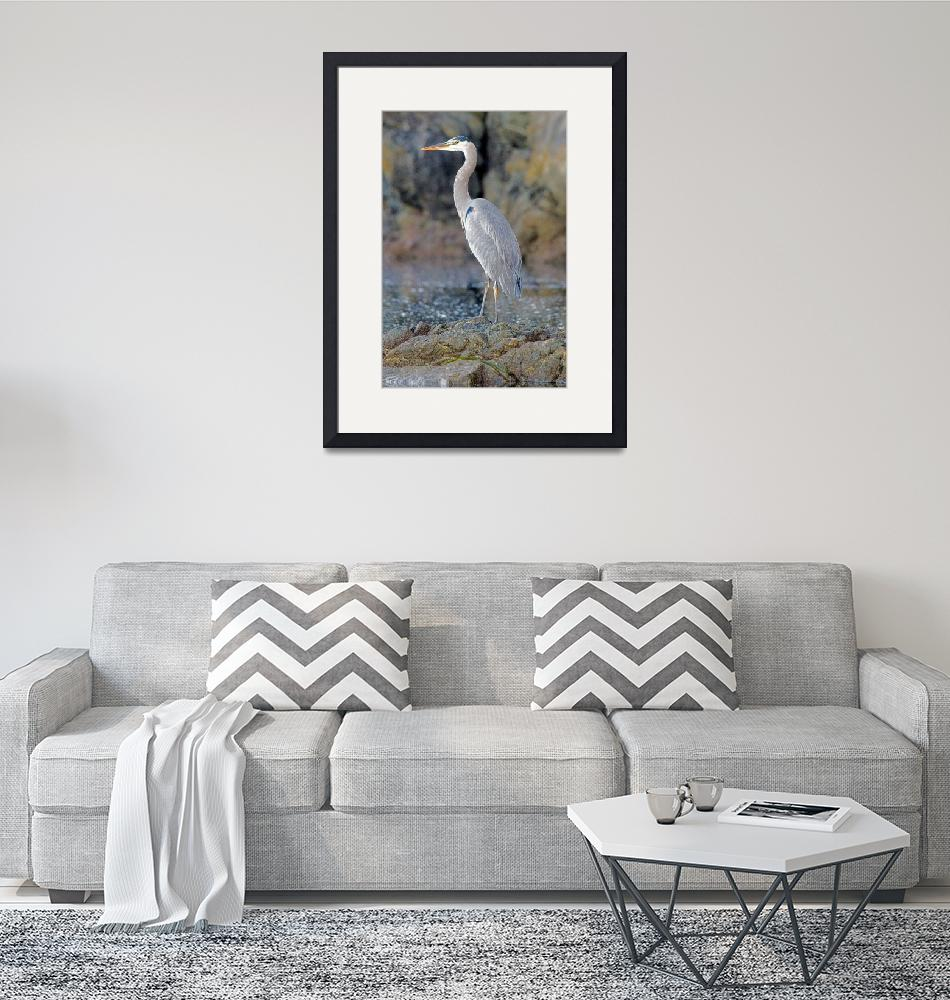 """Painted Heron""  (2006) by ednagallery"
