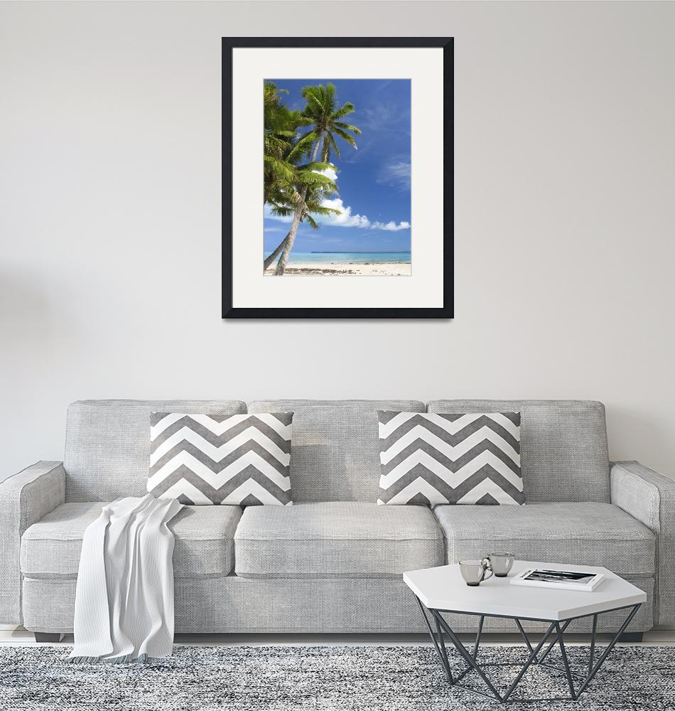 """""""Coconut Palm and turquoise lagoon, Aitutaki""""  by upliftingphotos"""