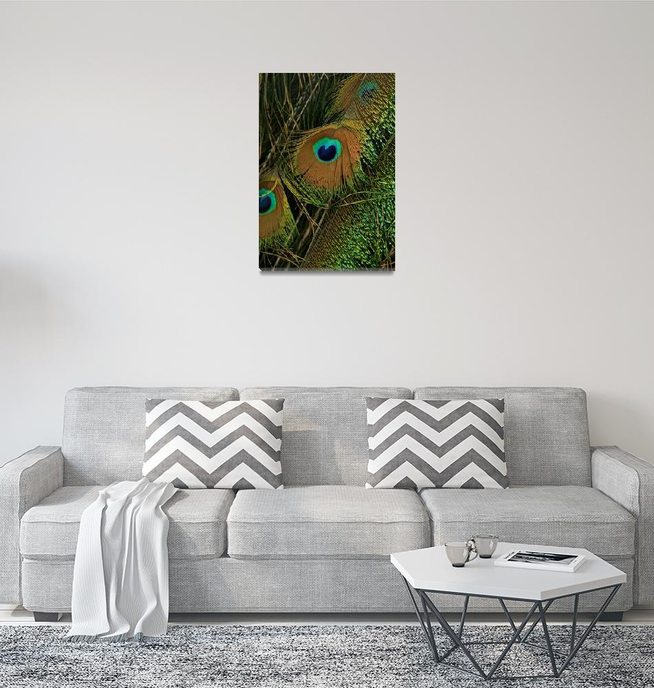 """""""Peacock feather""""  (2006) by IceCat"""