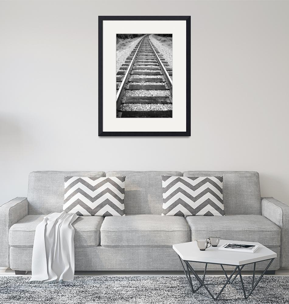 """""""The Tracks""""  (2009) by NatureScenes"""