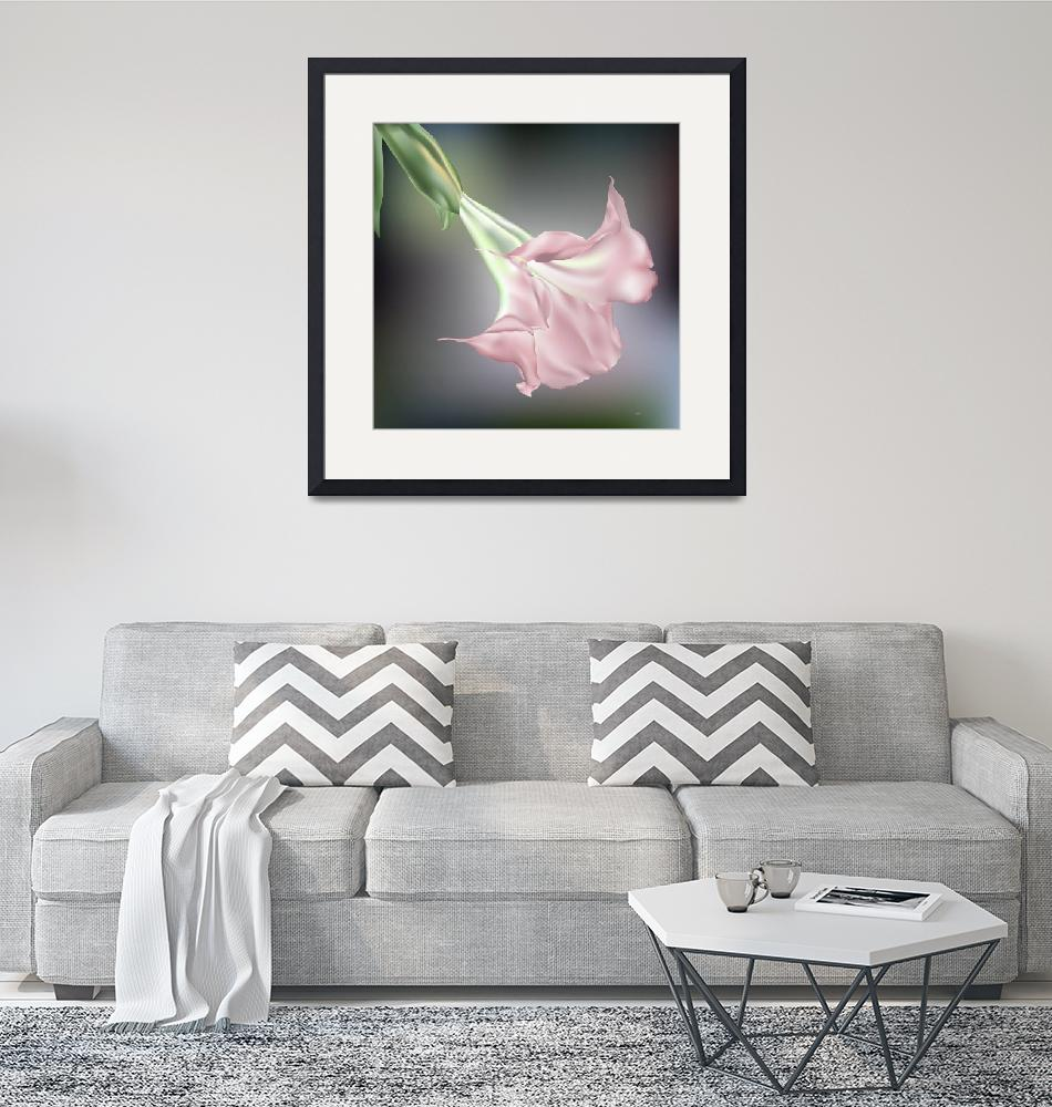 """""""Pink Angels Trumpet Flower""""  (2011) by AnneSoule"""