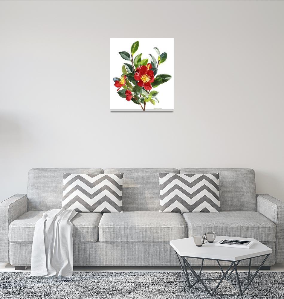"""""""Red Camellia, white background""""  (2014) by Pacific-NW-Watercolors"""