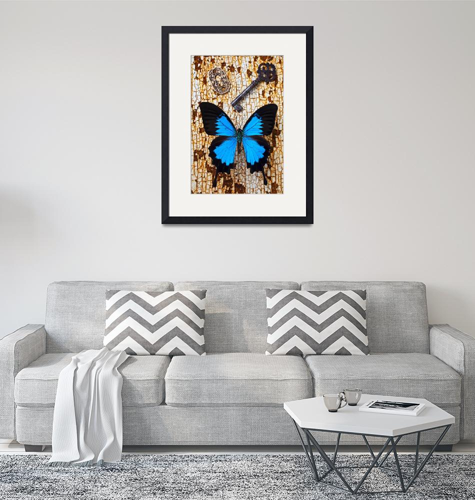"""""""Butterfly and Key""""  (2012) by photogarry"""