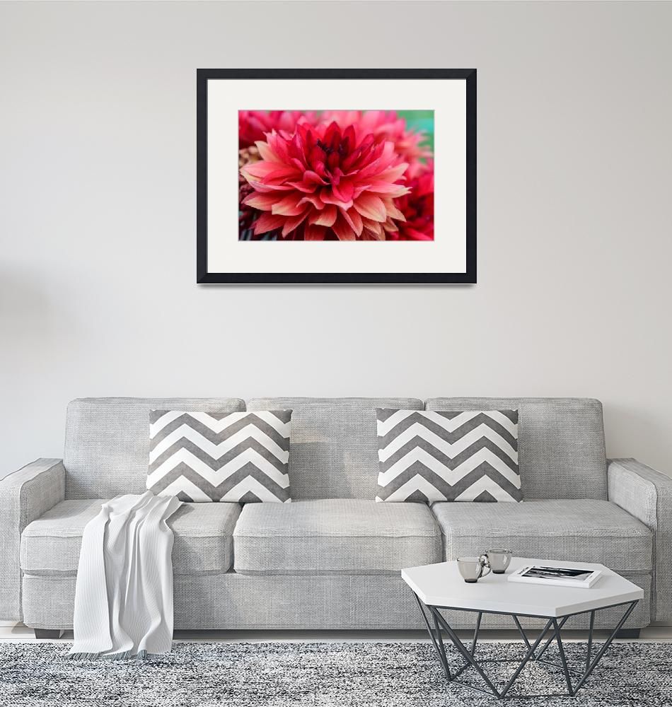 """Red Dahlia""  (2018) by Tracilou"