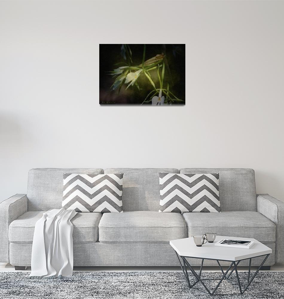"""Orchid Botanical""  (2010) by RCdeWinter"