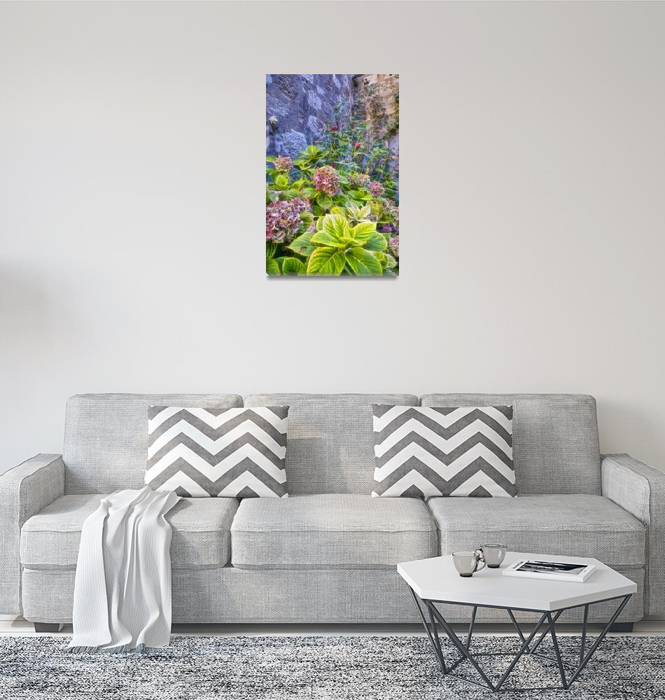 """""""Flowers By the Wall""""  (2017) by PaulCoco"""