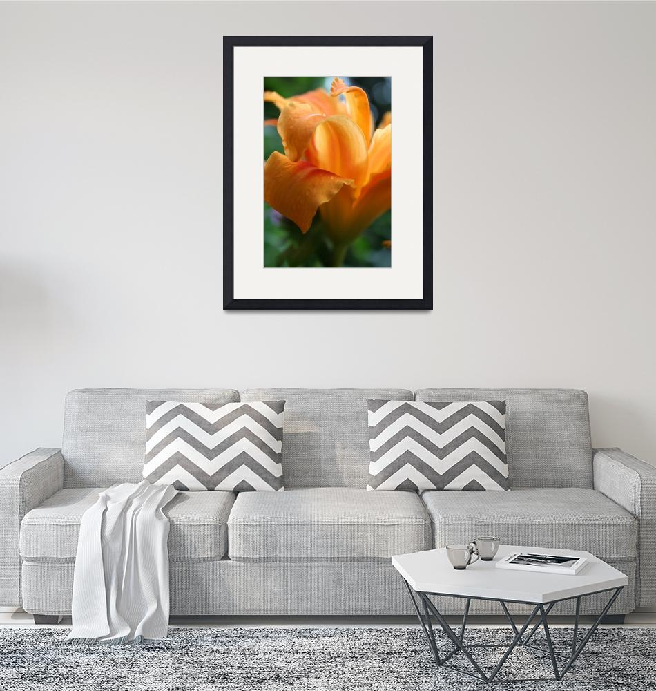 """""""Double Daylily""""  by dreamwhisper"""