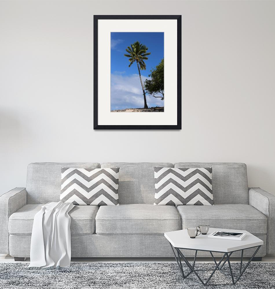"""Fiji Palm Tree""  (2014) by mpaskvan"