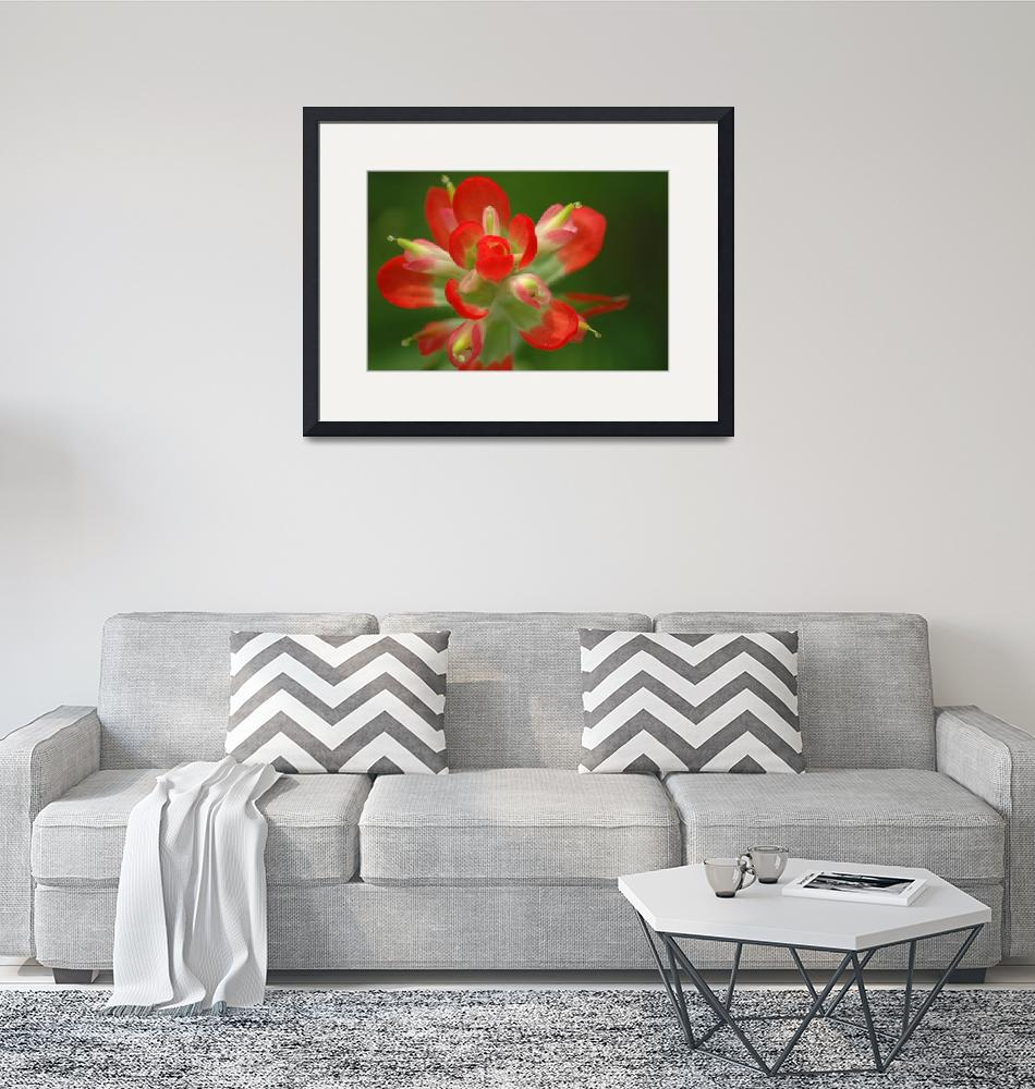 """""""Red blossom""""  by eatcraftlive"""