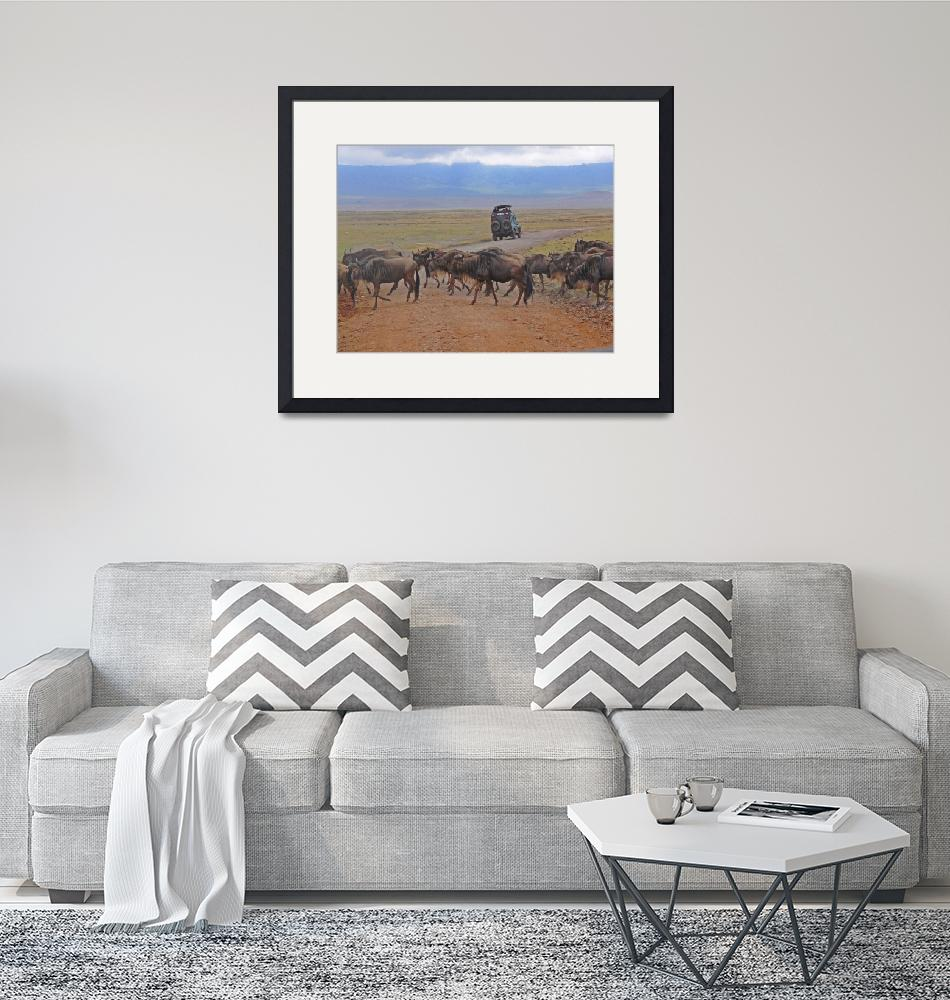 """Wildebeest Crossing""  (2007) by stockphotos"