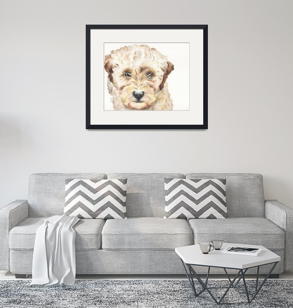 """TP Trailing Toddler Labradoodle Nala 1200""  by Designomel"