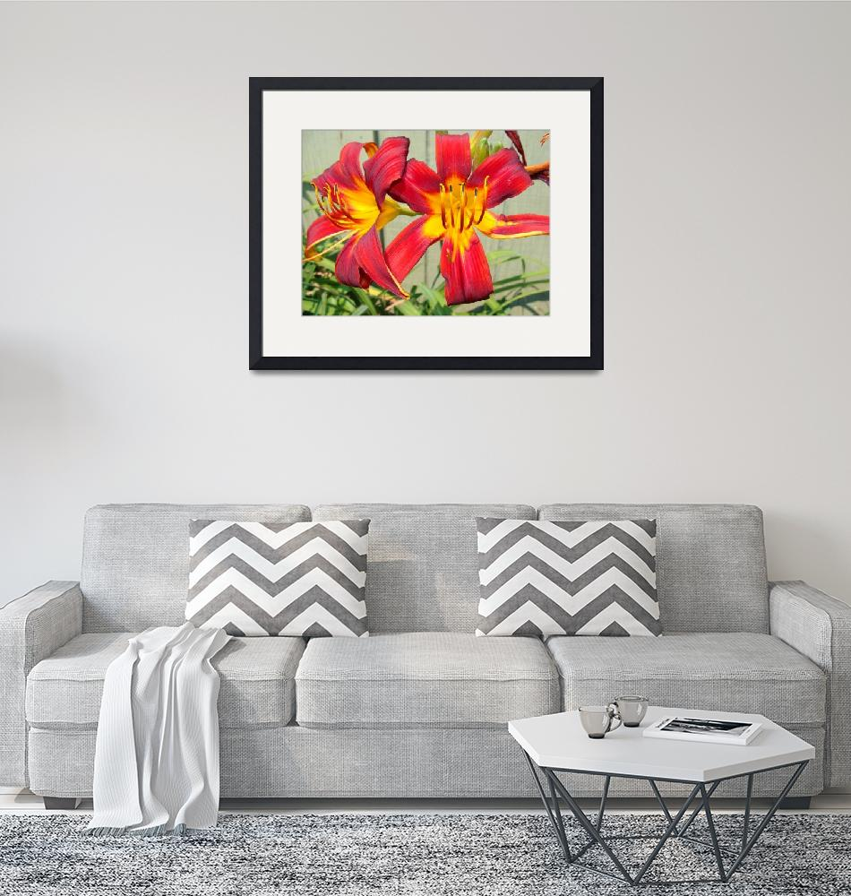 """""""Red Lily""""  (2008) by LivingGaia"""
