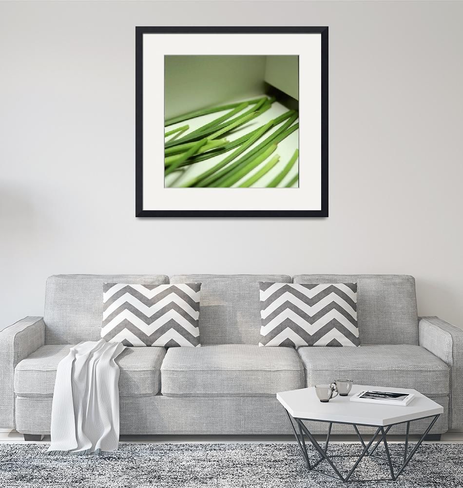 """""""chives""""  (2004) by atlasphotographic"""