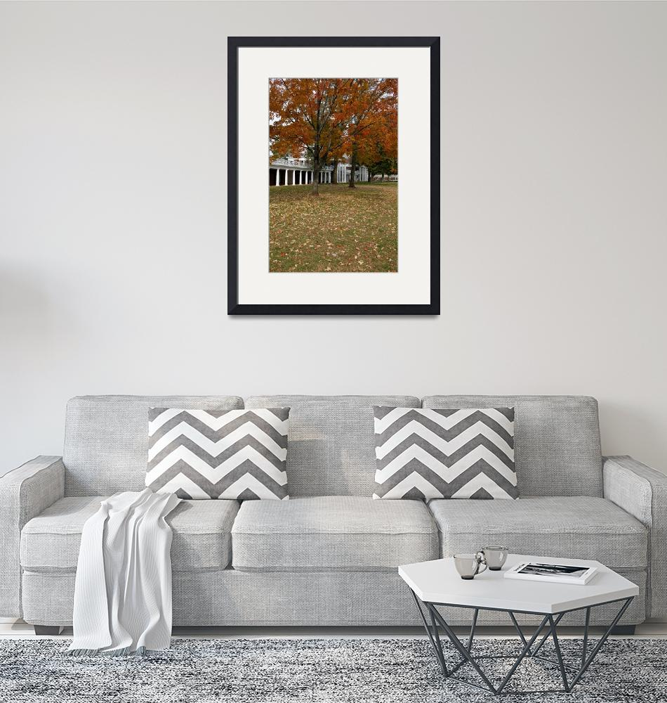 """""""Fall Leaves on The Lawn, University of Virginia, U""""  (2003) by fineartphoto"""