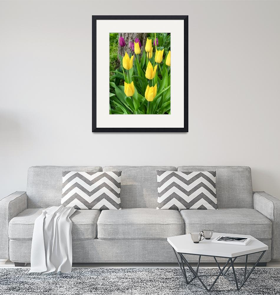 """""""Easter Tulips""""  (2019) by timknight"""