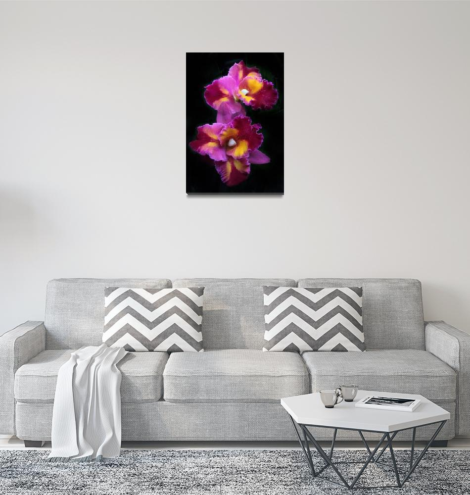 """""""Colorful Cattleya Orchids""""  (2020) by JessicaJenney"""