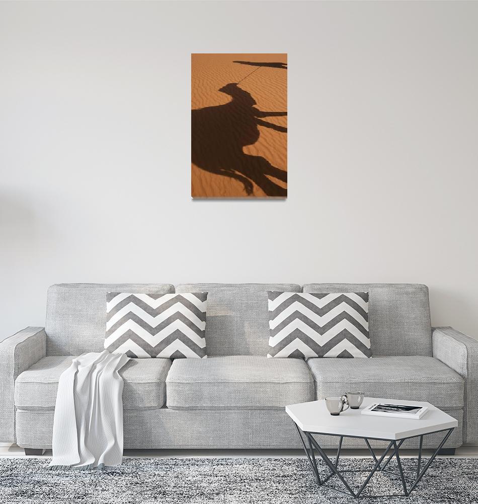 """Shadow Of Berber Leading Camel Across The Sahara""  by DesignPics"